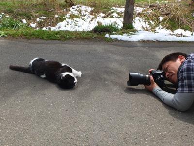 犬と猫とヒト 1_a0180681_16451976.jpg