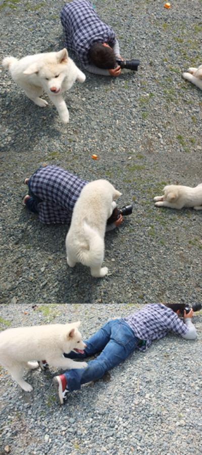 犬と猫とヒト 2_a0180681_17102023.jpg