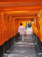 火曜サスペンス…行ってみたかったんだ…伏見稲荷…京都二番_d0266681_15542425.jpg