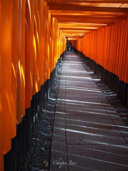 火曜サスペンス…行ってみたかったんだ…伏見稲荷…京都二番_d0266681_15562911.jpg