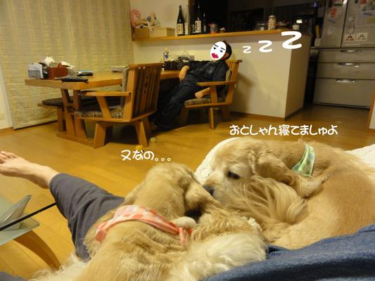 f0218182_1425747.jpg