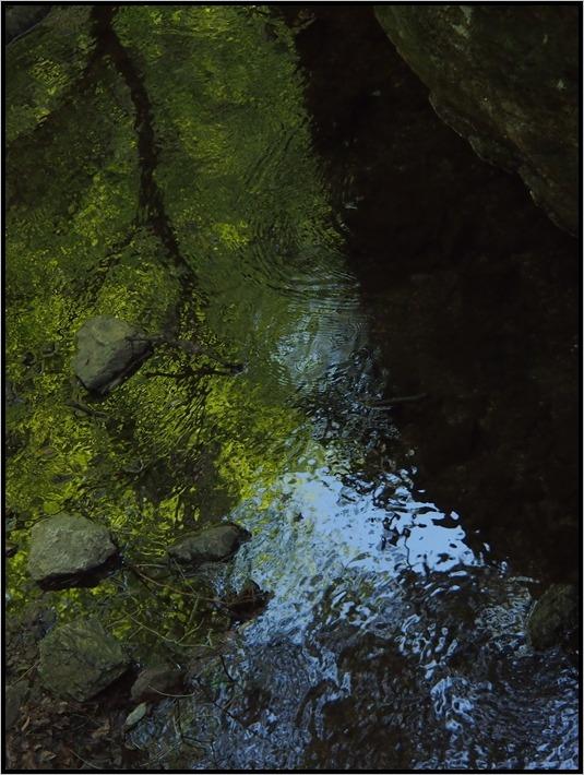 越辺川 源流の水_e0027083_746422.jpg