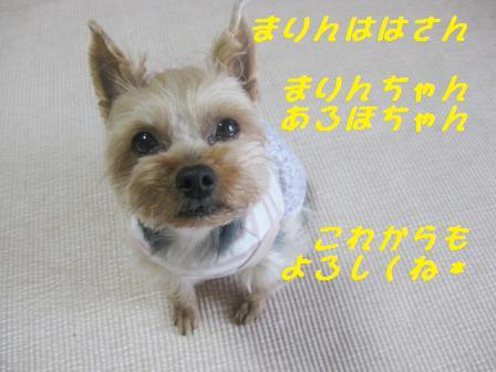 f0143386_2310274.jpg