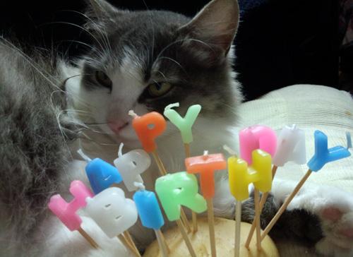 4月23日 HAPPY BIRTHDAY!_e0104695_1762414.jpg