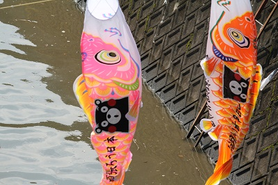 高橋稲荷大橋付近に泳ぐ600匹のこいのぼり♪_b0228113_14341027.jpg