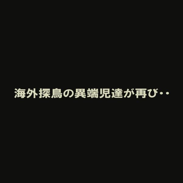 予告編_d0067451_15263670.jpg