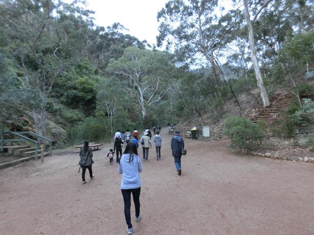 Morialta Conservation Parkに行ってきました。_f0234165_16351523.jpg