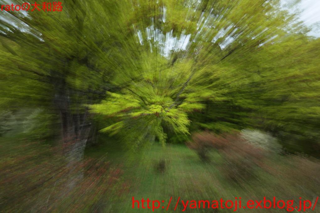 f0236776_2238364.jpg