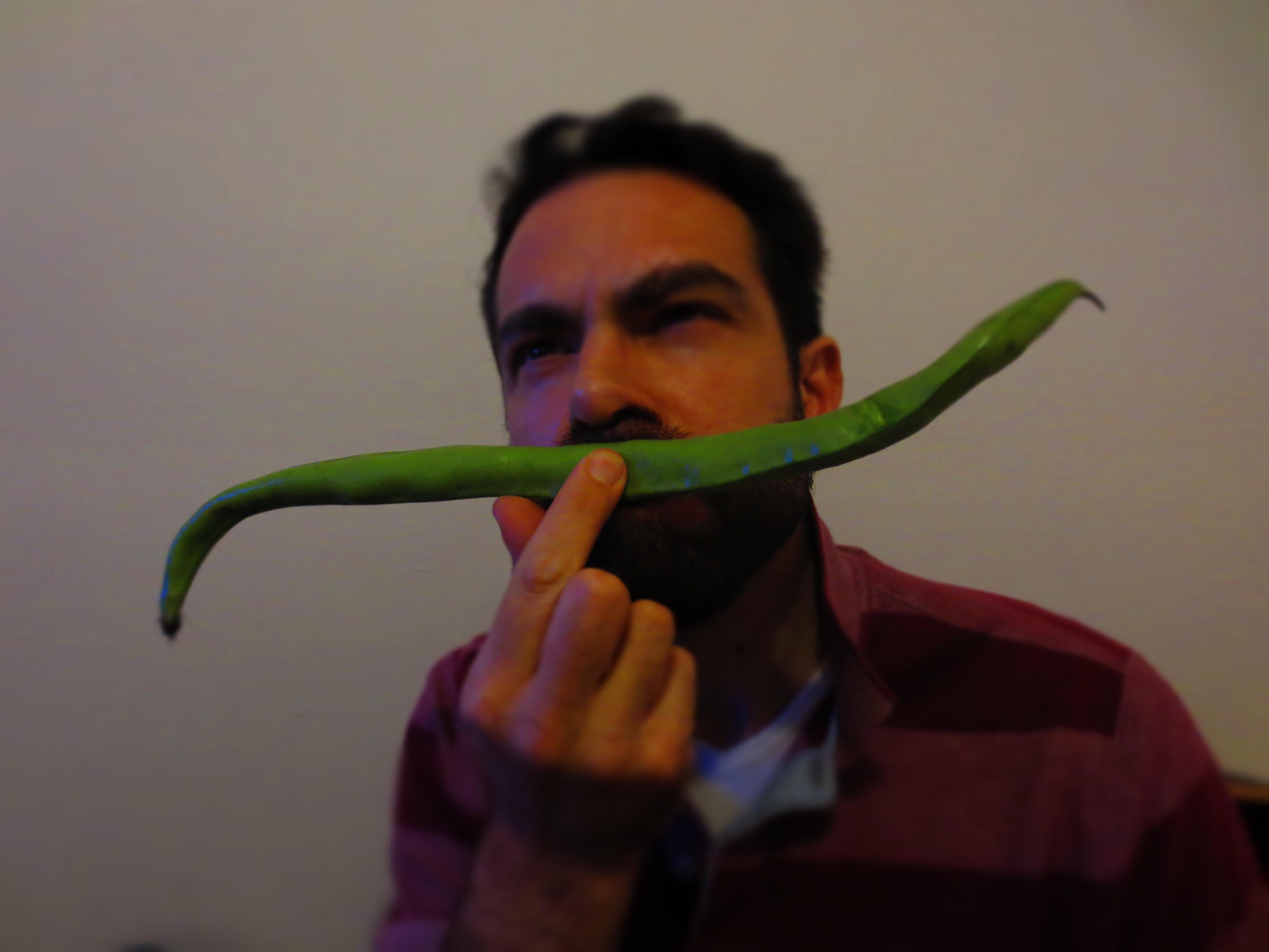 サラミの食べ過ぎに要注意の時期です!!_c0179785_18473225.jpg