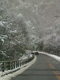 桜の見頃が過ぎたのに雪景色_d0262085_17374390.jpg
