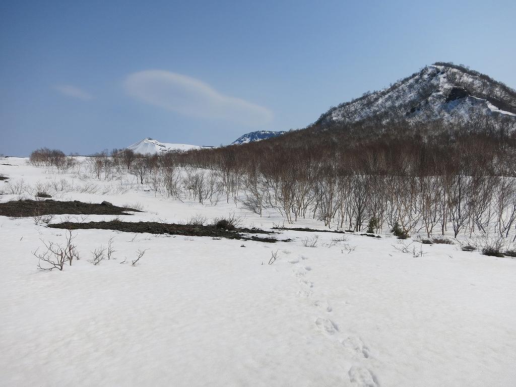 4月23日、風不死岳と樽前山-風不死岳からゲート編-_f0138096_20372134.jpg