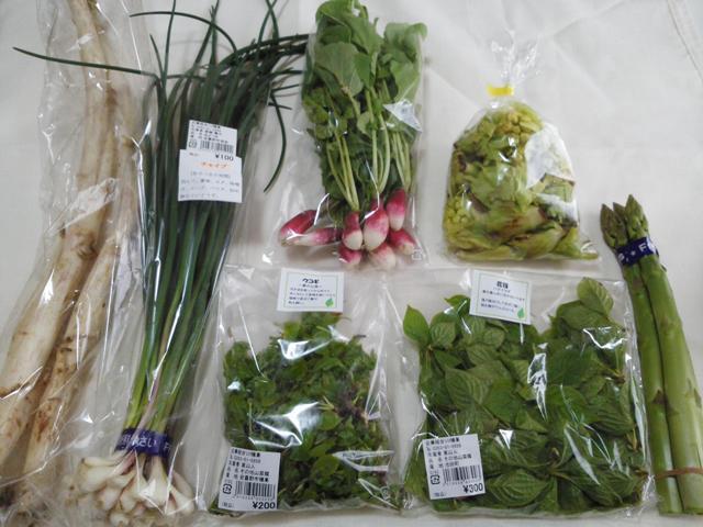 春野菜_b0237604_10221039.jpg