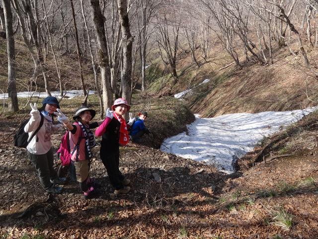 武奈ヶ岳てっぺんまで上がって下がる_e0052012_0381626.jpg