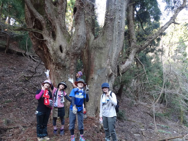 武奈ヶ岳てっぺんまで上がって下がる_e0052012_0383395.jpg