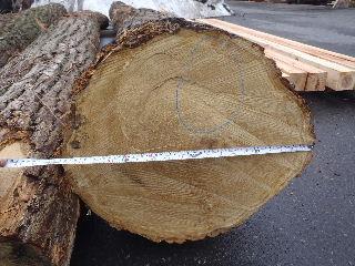 木材の仕入れ その4_f0105112_715352.jpg