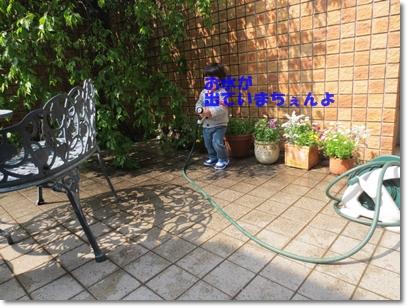 b0167519_22113627.jpg
