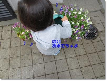 b0167519_22153835.jpg