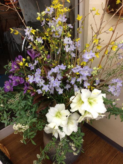今週のお花とセール情報_a0200423_19423166.jpg