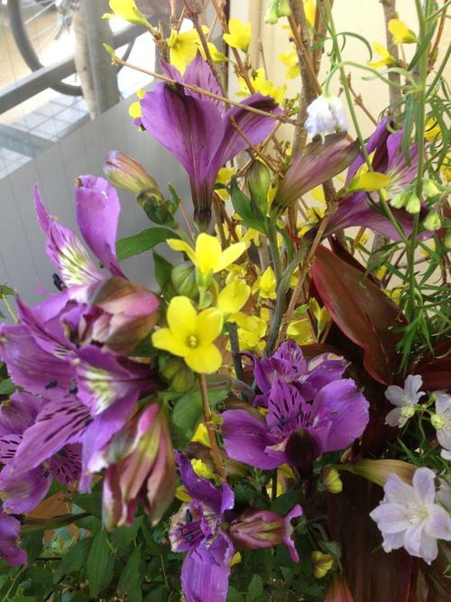今週のお花とセール情報_a0200423_19542097.jpg