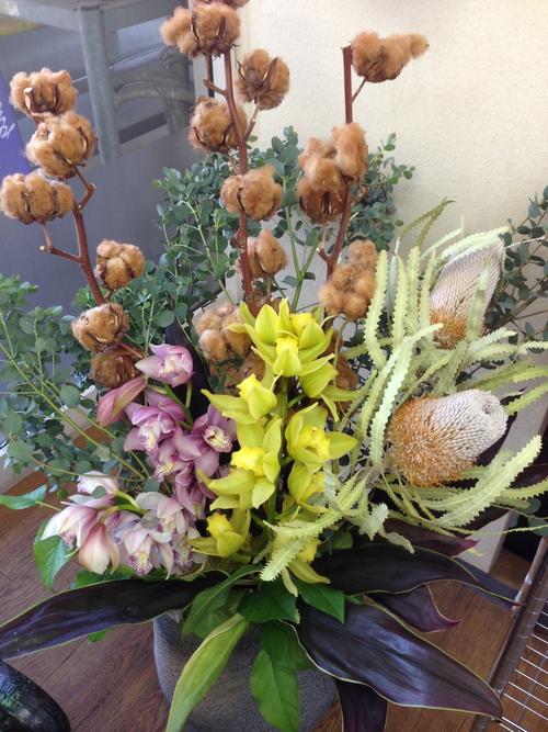 今週のお花とセール情報_a0200423_20411995.jpg