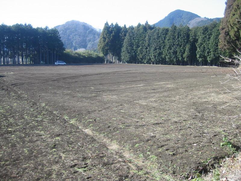 畑の紹介_c0289626_23105416.jpg