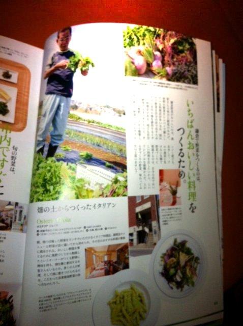 畑の野菜達を通じて・・_c0222448_20352217.jpg