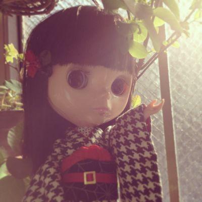 小人雑貨店3rd 開店♪_f0237452_1256557.jpg