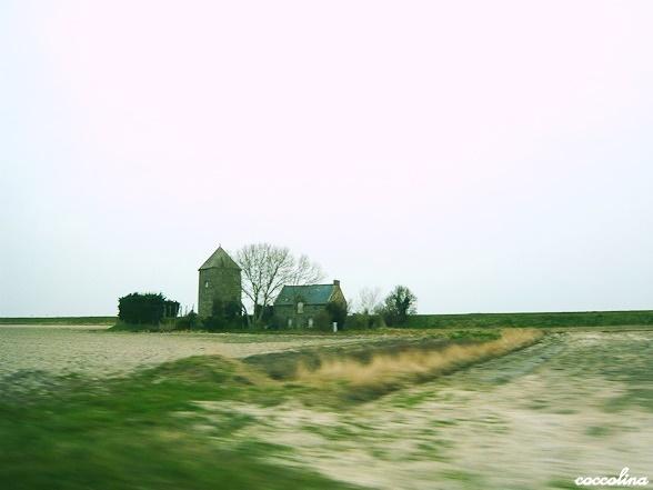 d0246898_1725115.jpg