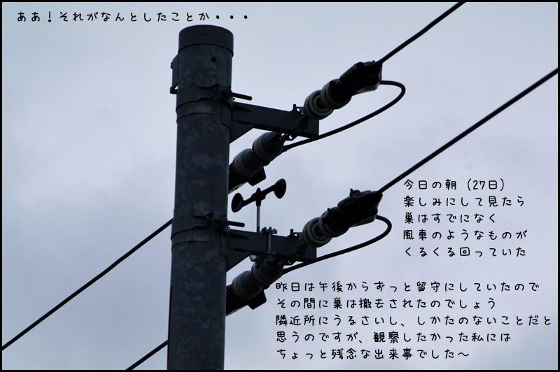 b0019313_1442110.jpg