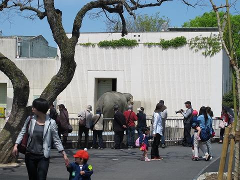 動物園_c0077531_23175760.jpg