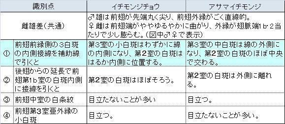 類似2☆ イチモンジチョウ × アサマイチモンジ  翅表比較図Ⅱ_a0146869_0333546.jpg
