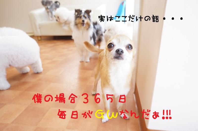 d0220513_16473334.jpg