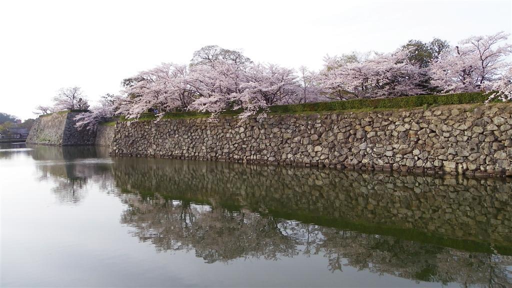 [青春18] 04/04-05兵庫-姫路 三つ山大祭_d0187917_16254655.jpg