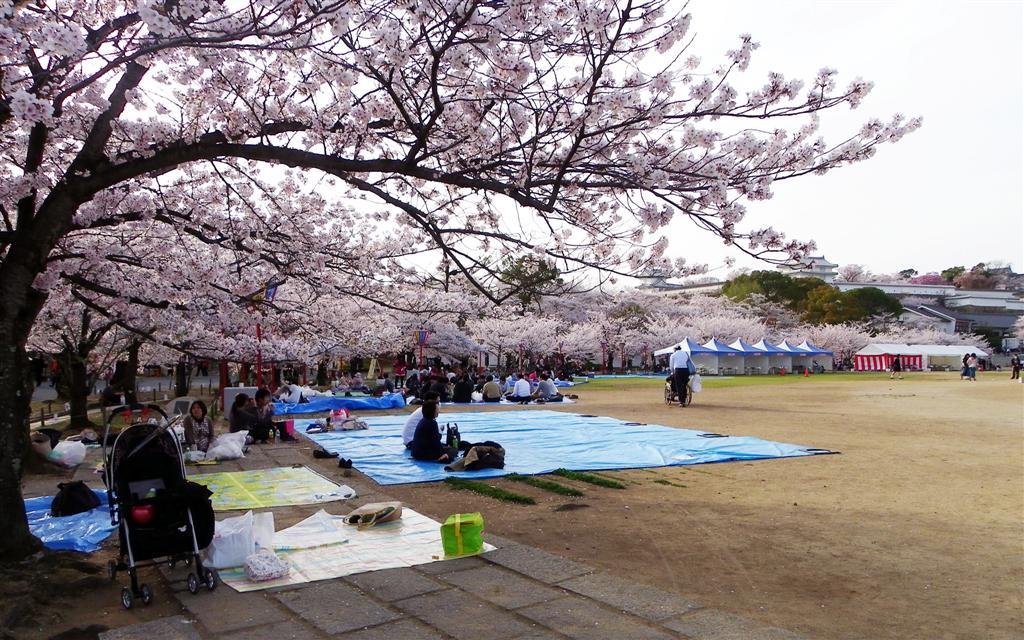 [青春18] 04/04-05兵庫-姫路 三つ山大祭_d0187917_1626718.jpg