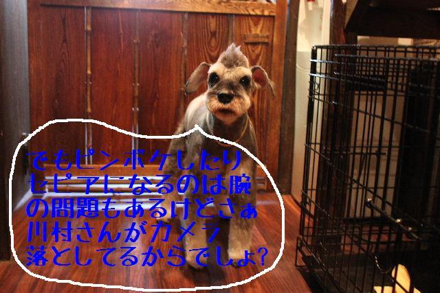 b0130018_23285635.jpg