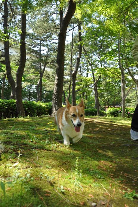 GWは横浜で_d0102523_1231291.jpg