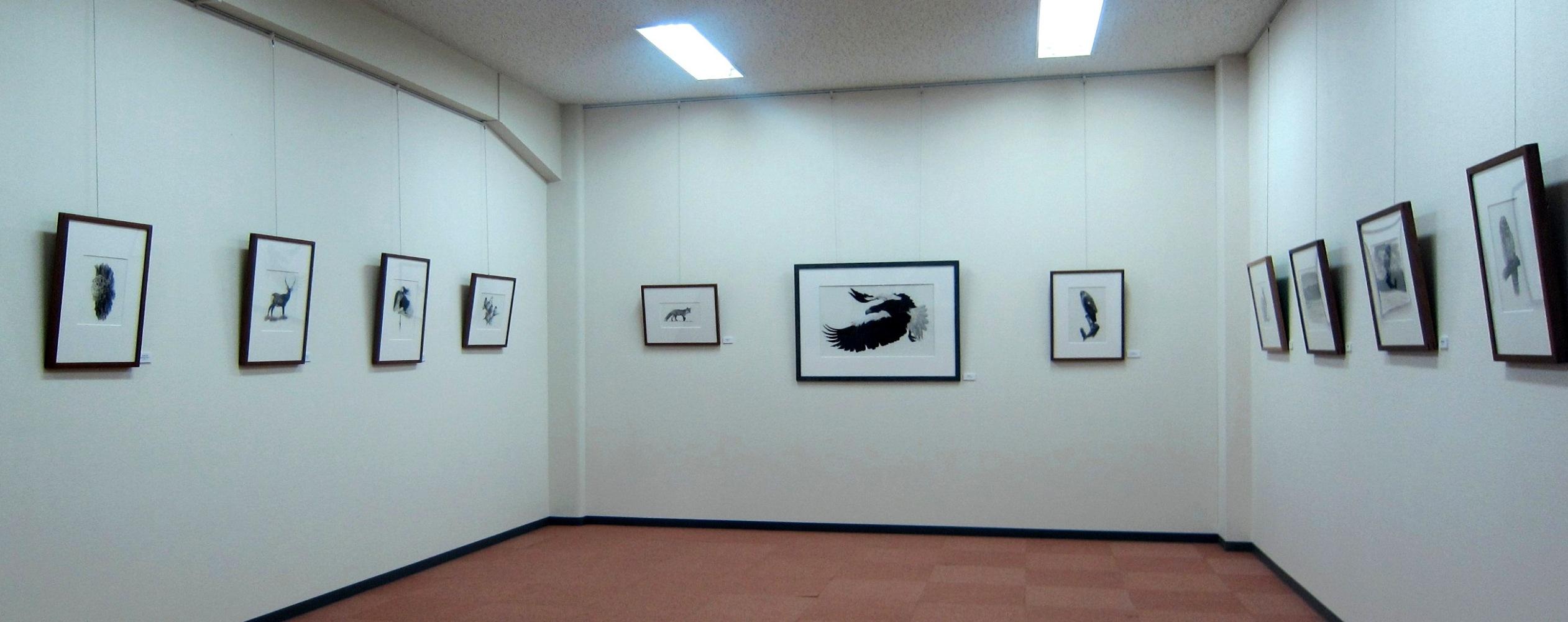 2033)「増田寿志 展 [Nature]」 北海道文化財団ART SPACE 3月28日(木)~5月24日(金)_f0126829_1281029.jpg