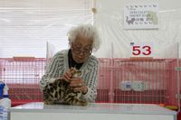 AJC CAT SHOW thank you~#2_f0168339_16385521.jpg