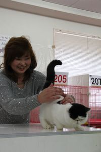 AJC CAT SHOW thank you~#2_f0168339_16393751.jpg