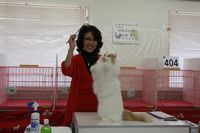 AJC CAT SHOW thank you~#3_f0168339_16411133.jpg