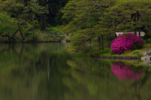 ツツジの美しい庭園にて_a0257652_17432891.jpg