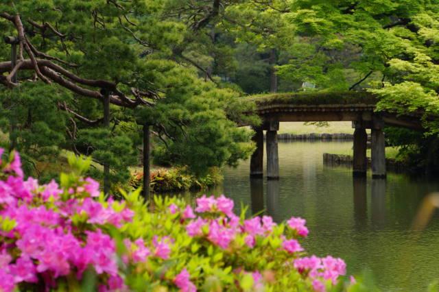 ツツジの美しい庭園にて_a0257652_17435954.jpg