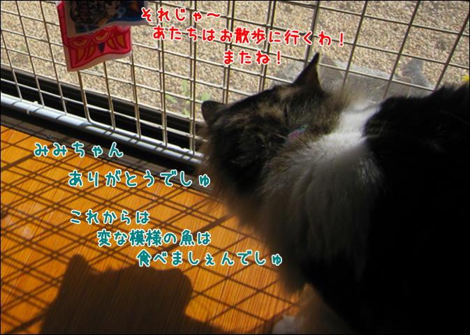 d0139352_164045.jpg