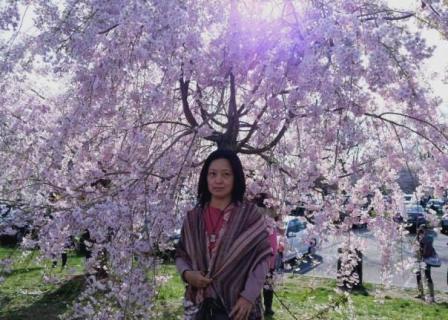 NY郊外の桜&アンチエイジングの秘訣_b0173754_0281791.jpg