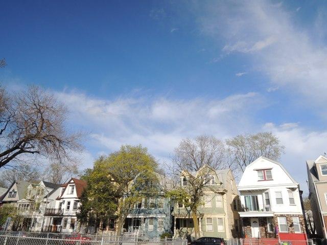 NY郊外の桜&アンチエイジングの秘訣_b0173754_0285165.jpg