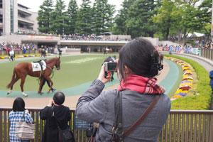カメラ日和学校第5期レポート(4/20)_b0043961_1813416.jpg
