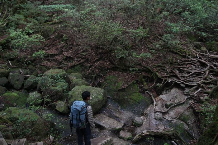 私が日本で一番住みたい場所_a0115762_2045384.jpg