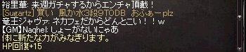 b0048563_20543638.jpg