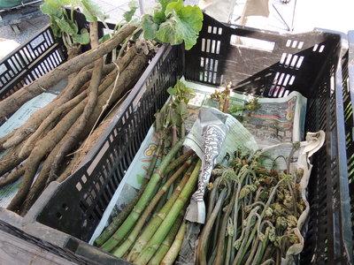 今日は奈良オーガニックマーケット_b0252363_18524753.jpg