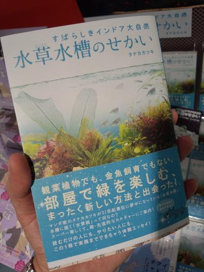 水草_f0182998_2222531.jpg